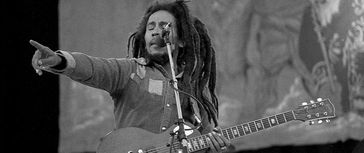 Une espèce de parasites a été nommée d'après Bob Marley !