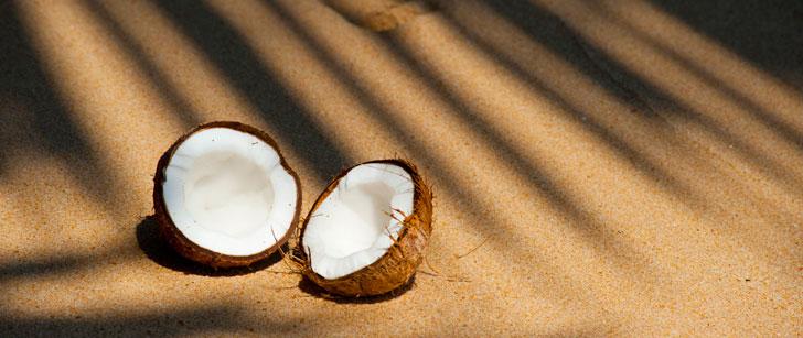 Le Sri Lanka a un ministère du développement de la noix de coco !