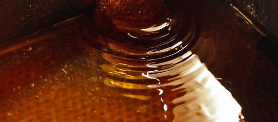 Le miel ne périme jamais