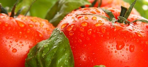La tomate est un fruit