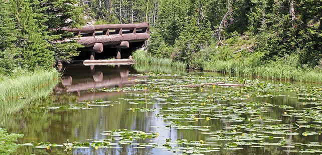 Le saviez-vous ? Il existe un lac dont les eaux coulent dans deux océans différents ! Isa-Lake