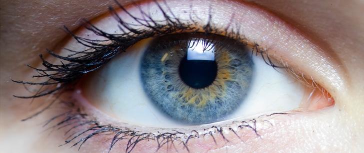 Les muscles de vos yeux se déplacent 100 000 fois par jour !