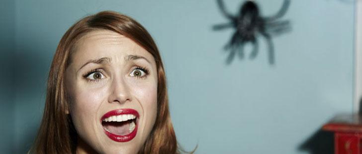 Plus vous avez peur des araignées, plus elles vous paraissent grosses !