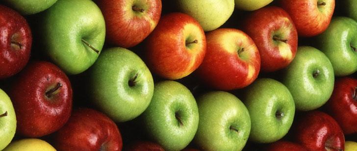 Si vous mangez une variété de pomme différente chaque jour, il vous faudrait 20 ans pour les essayer toutes !