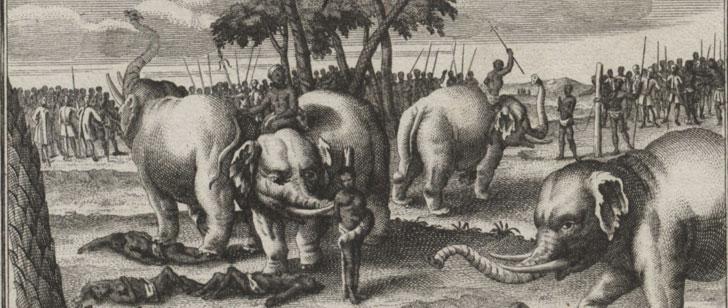 Les éléphants ont été utilisés comme bourreaux pendant des siècles en Asie du Sud et du Sud-Est !