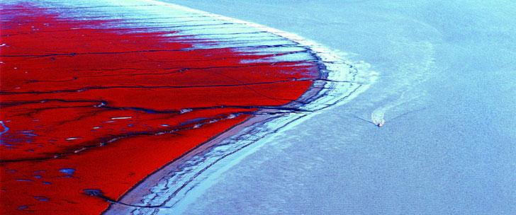 Il existe une plage rouge en Chine !