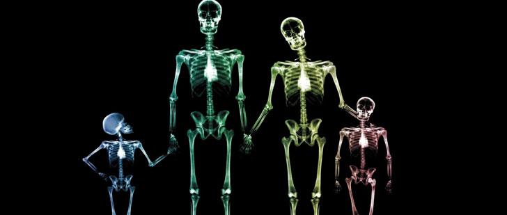 A la naissance, le squelette humain est composé de 300 os, à l'âge adulte, il ne sera composé que de 206 os !