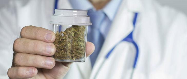 Ces maladies que le cannabis soulage