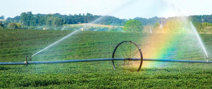 Le premier système d'irrigation a été construit vers 7000 av. J.-C en Mésopotamie (Irak actuel) !