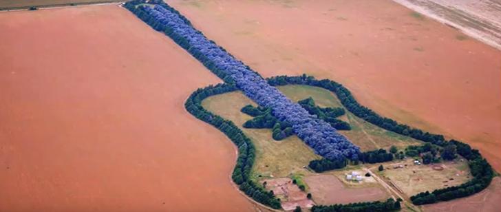 En Argentine, il existe une forêt en forme de guitare !