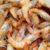 Des chercheurs égyptiens ont transformé les carapaces de crevettes en plastique biodégradable !