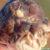 Un serpent à trois yeux a été découvert en Australie !