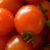 tomates gènes humains