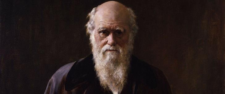 Le saviez-vous ? Charles Darwin a été le premier à poser des roulettes sur une chaise de bureau ! Charles-darwin